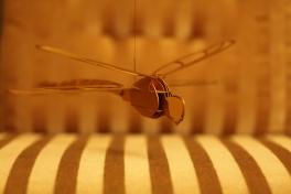 Libelle (Gold eloxiert)   CHF 80.-
